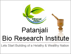 Patanjali Bio Research Institute